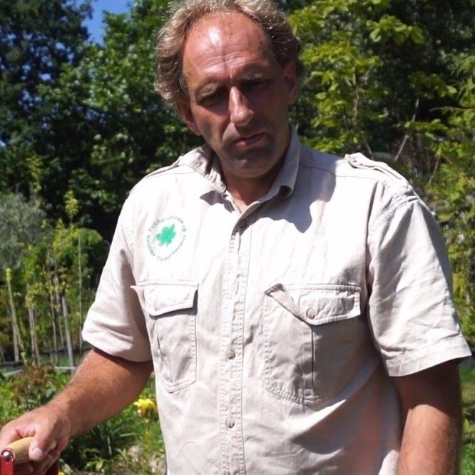 saadan-planter-du-aebletrae